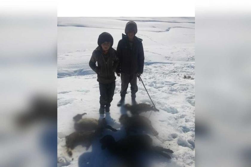Şırnak'taki köylülerin yolları aylardır kapalı, bir aile mahsur