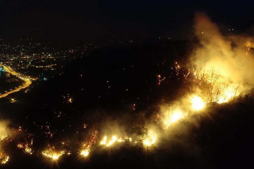 Giresun'da orman yangını yayılıyor