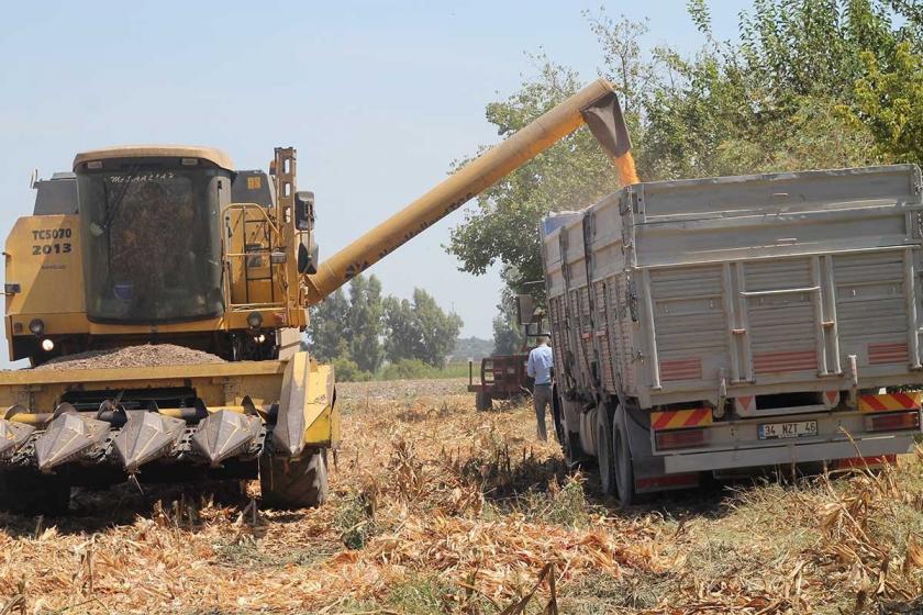 """CHP'li Ayhan Barut: """"Tarımda ithalata değil ihracata destek verilsin"""""""