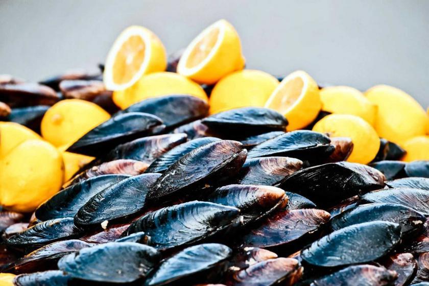 Bodrum'da 50 kişi midyeden zehirlendi, açıkta midye satışı durduruldu