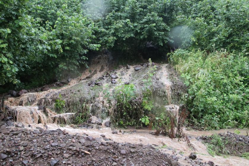 Aşırı yağış Düzce'de sele neden oldu