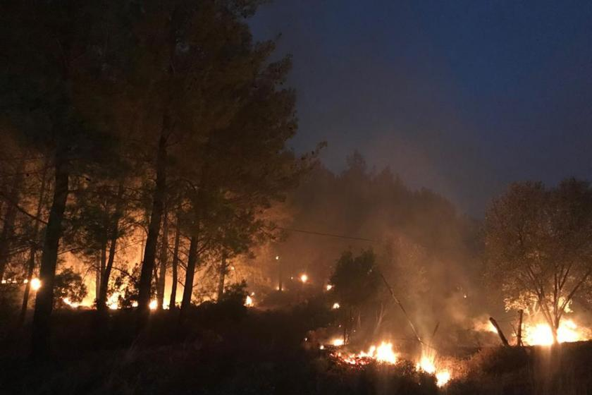 CHP ve HDP, Muğla Dalaman'da süren orman yangınını sordu