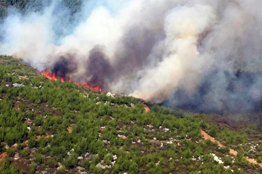 9 ilde çıkan orman yangınlarının tamamı söndürüldü