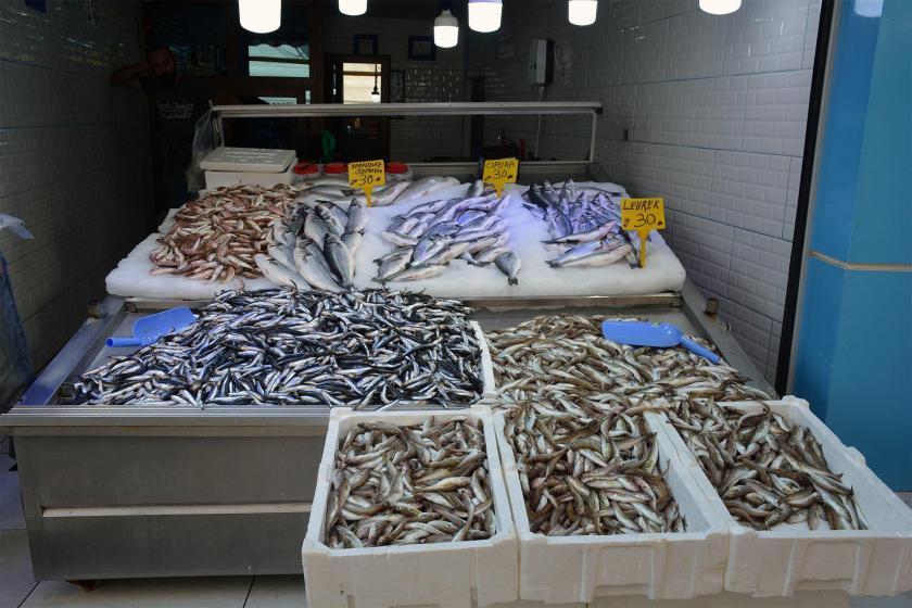 Balık fiyatları el yakıyor: Hamsi 20, istavrit 10 TL