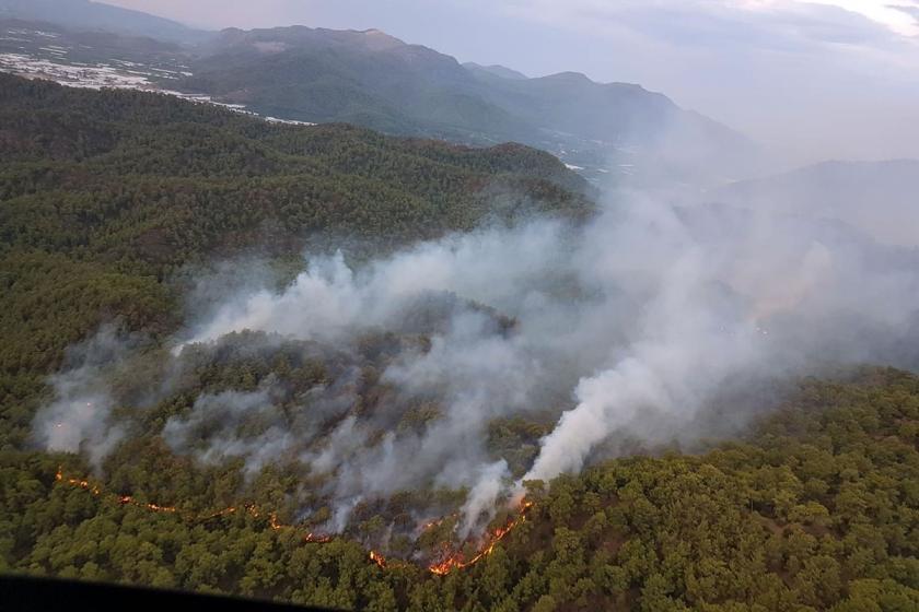 Muğla'nın Ortaca ilçesinde çıkan orman yangını kısmen kontrol altına alındı