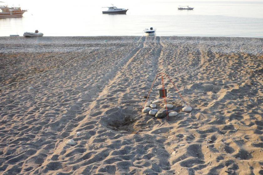 Çıralı sahilinde araçların tekerlek izleri