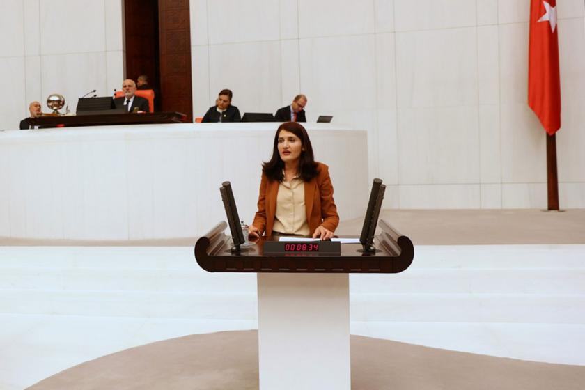 HDP Diyarbakır Milletvekili Semra Güzel, Meclis kürsüsünde