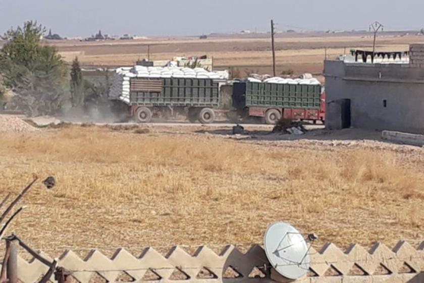 Tahıl yüklü kamyonlar