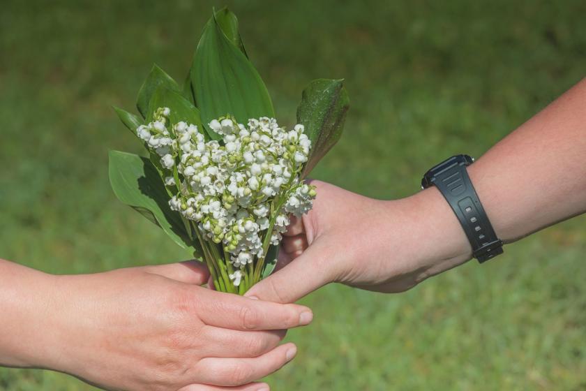 Çiçek veren bir çocuk eli ve çiçeği alan bir kadın eli