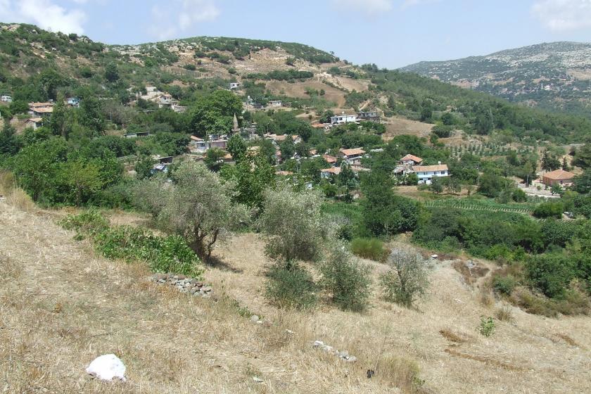 Olgunlar Köyü