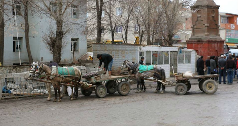 Diyadin'de at arabacılığı dönemi sona eriyor