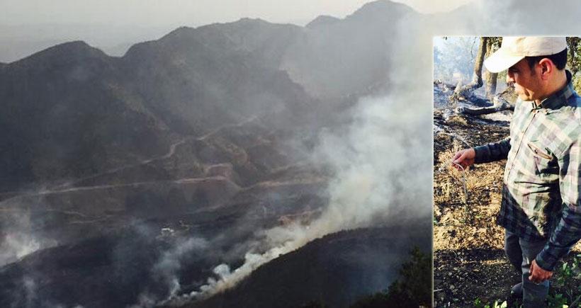 Faysal Sarıyıldız: Cudi'deki yangında birçok canlı öldü