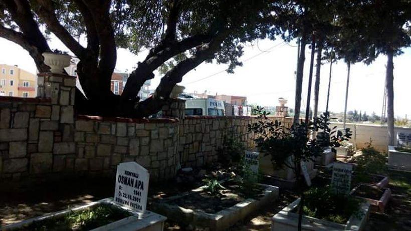 Didim'de mezarlıkta gözaltı!