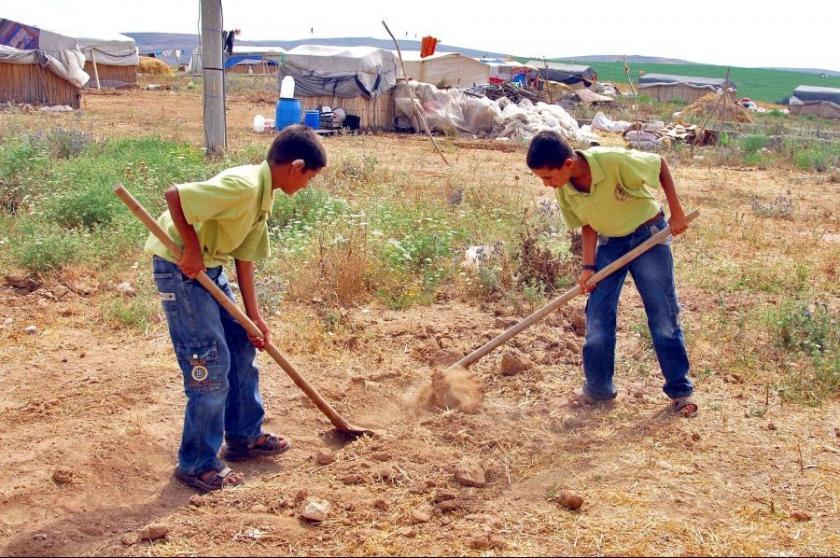 Çocuk işçiler için 5 yılda sadece 232 işletmeye ceza kesildi