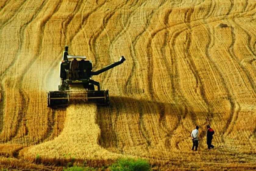 Tarımda üretim  alanlarının  sonuna gelindi