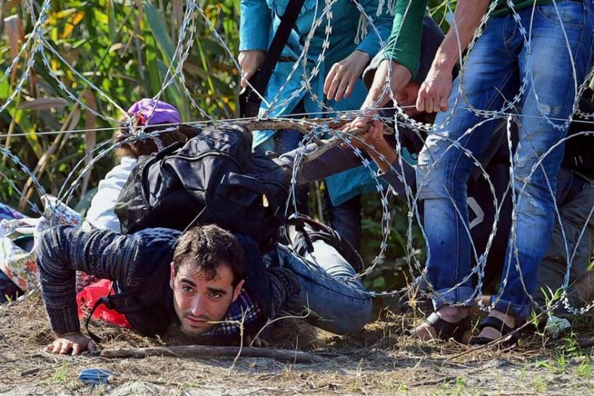 Macaristan'da mülteci kotası referandumu