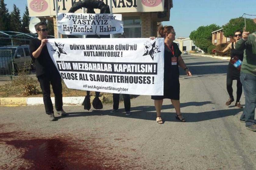 Hayvanların katledilmesi protesto edildi