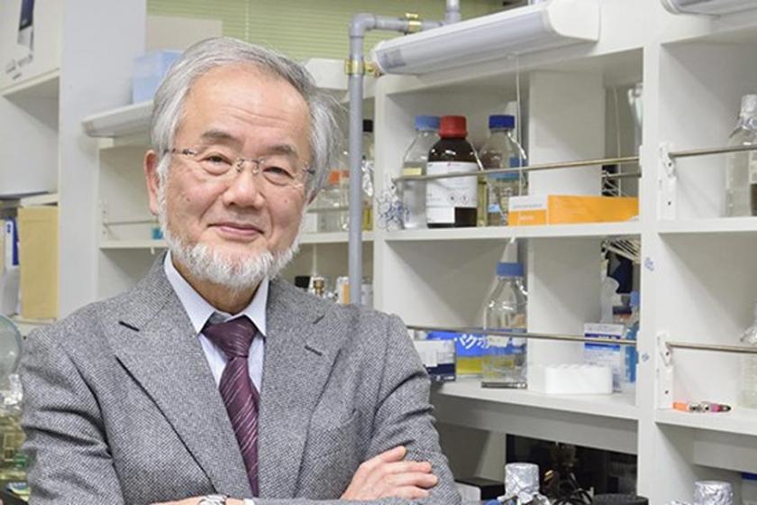 Nobel Tıp Ödülü Japon Yoshinori Ohsumi'nin