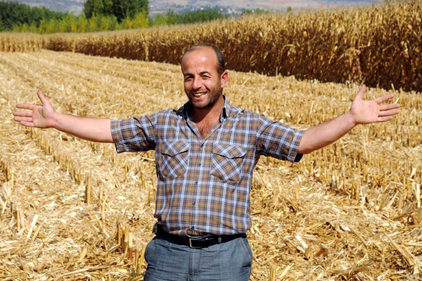 Tarladan çaldırdığı 19 ton mısırı buldu