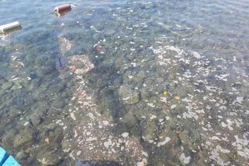 Çandarlı'da da atık sular denize dökülüyor