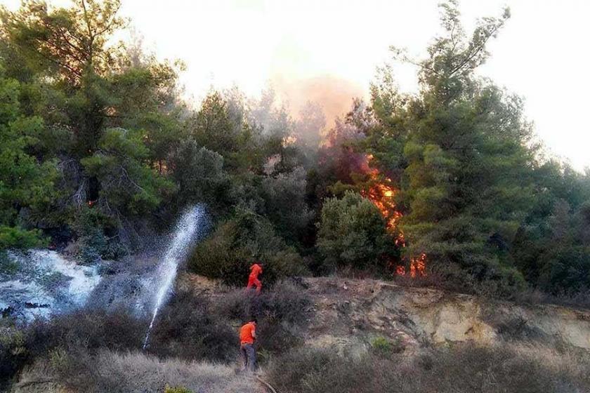 Antalya'da 10 hektar ormanlık alan ve zeytin ağaçları yandı