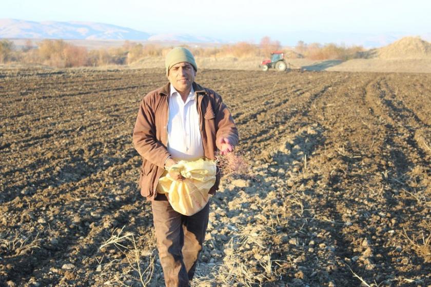 Bölge'de çiftçininumudu toprakta