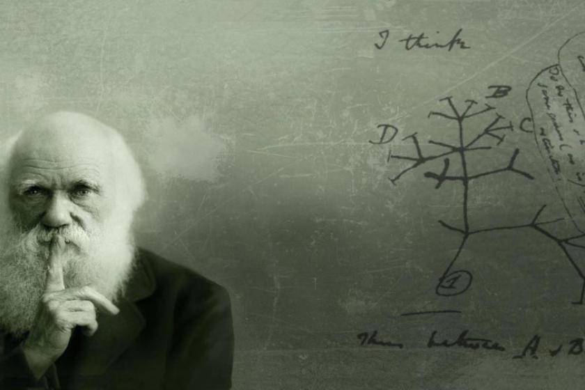 Evrim Teorisini eğitimden çıkarmışlar, evrimi çıkaramamışlar