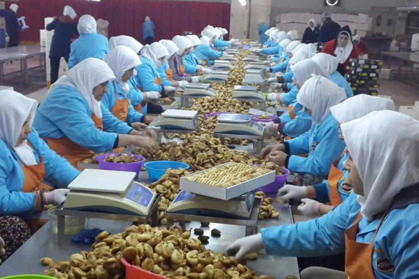 Müezzinoğlu: Kadının iş gücüne katılma oranı yüzde 32,5