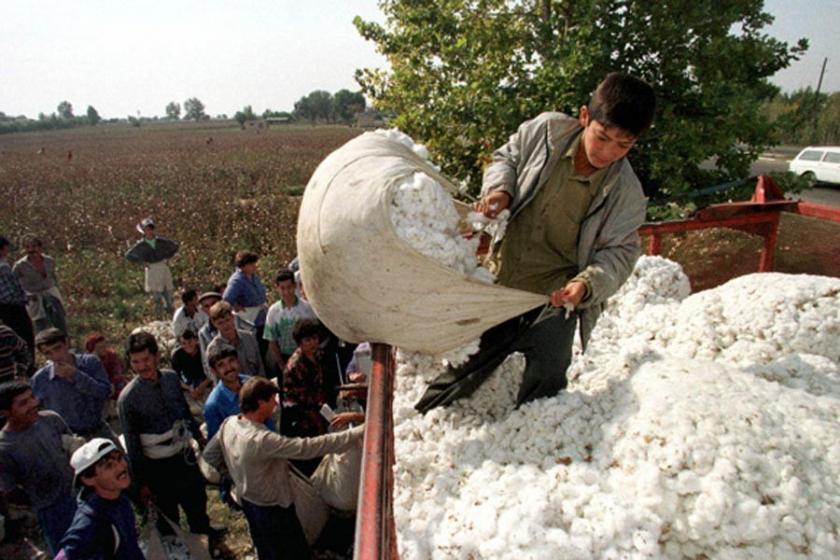 Moda endüstrisinde milyonlarca çocuk işçi çalıştırılıyor