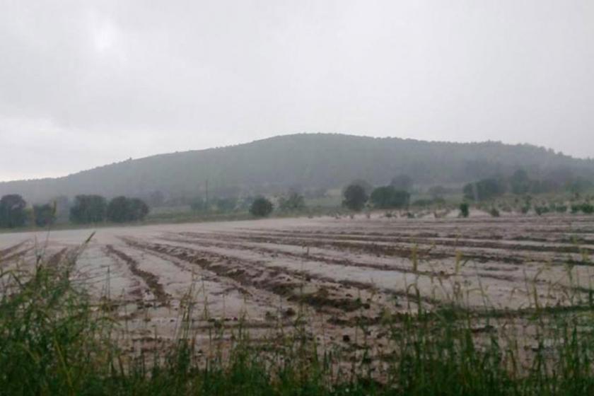 Denizli'de tarım alanları su altında kaldı
