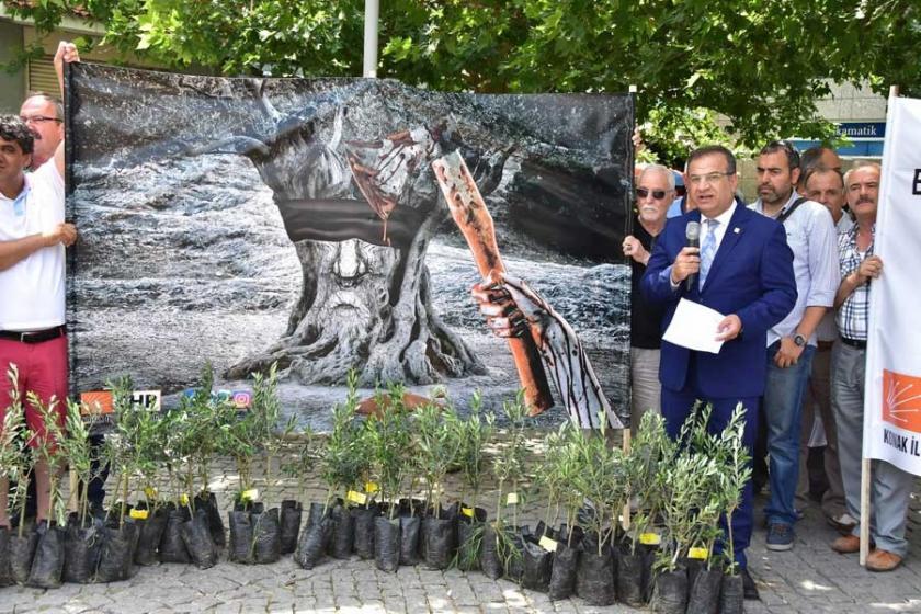 CHP'lilerden zeytin eylemi