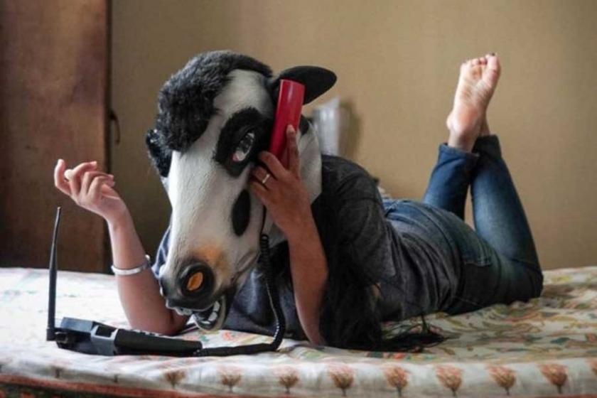 'Kadınlar ineklerden daha mı değersiz?'