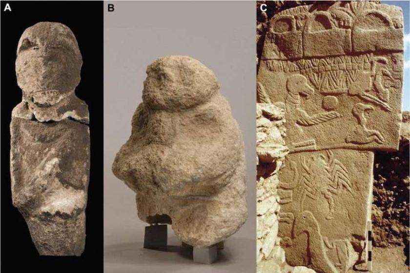 Göbekli Tepe'de yeni keşif: Çakmaktaşıyla oyulmuş  kafatası