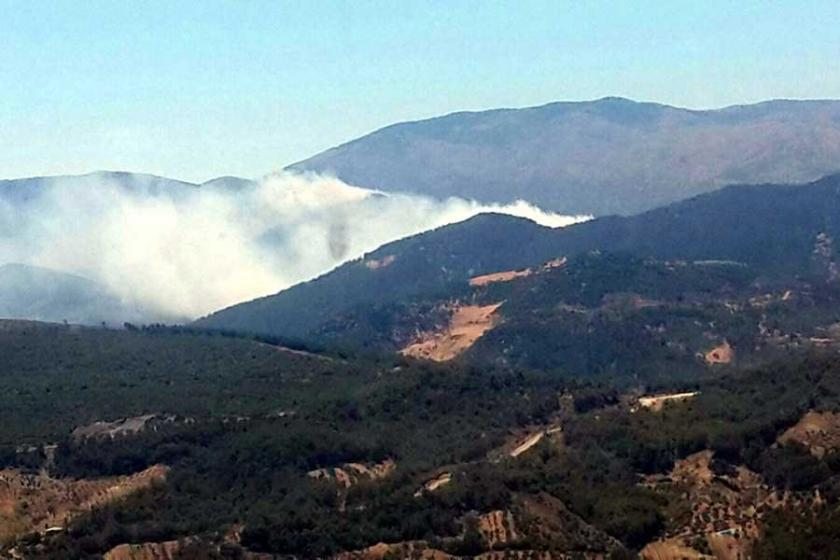 Hatay'da Amanos Dağ'ı eteklerinde orman yangını çıktı