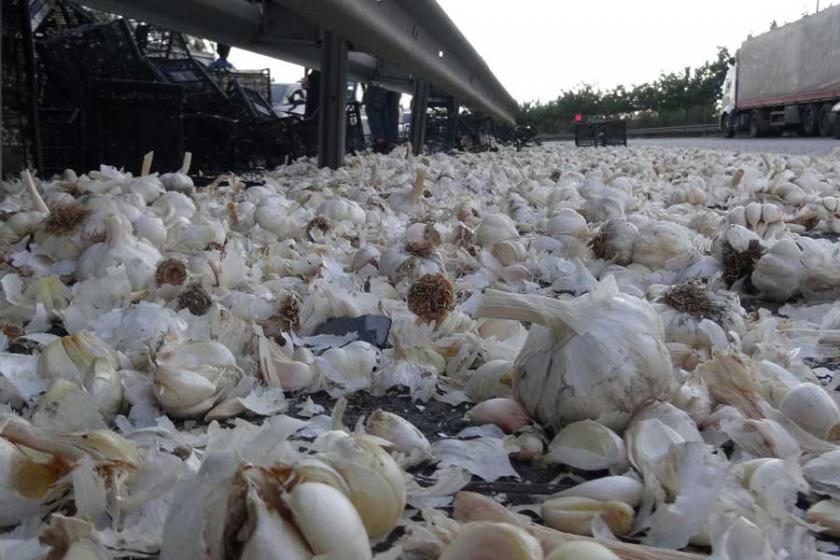 Bariyerlere çarpan TIR'daki 23 ton sarımsak yola saçıldı