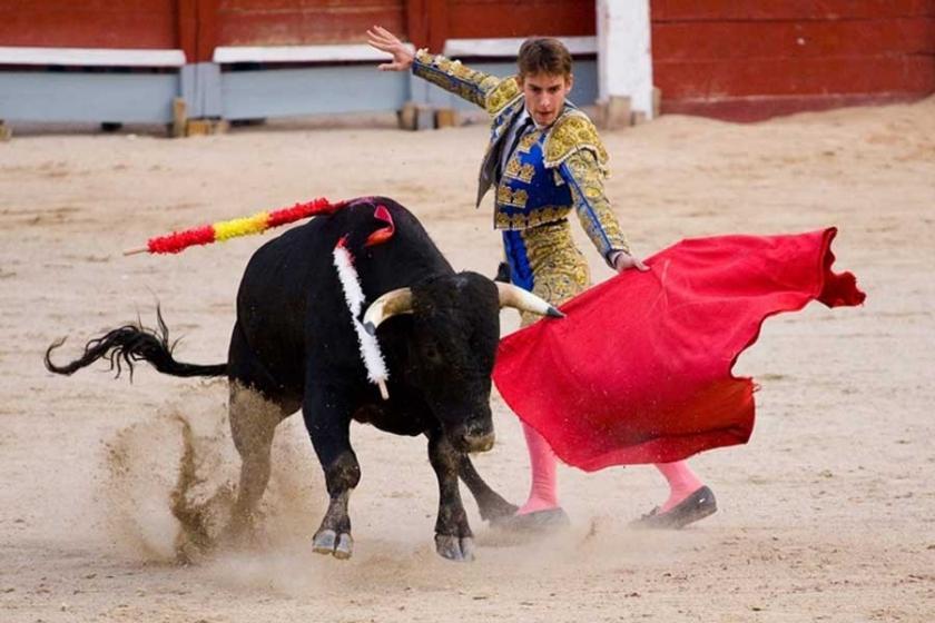 İspanya'nın Balear Adaları'nda, boğa öldürmek yasaklandı