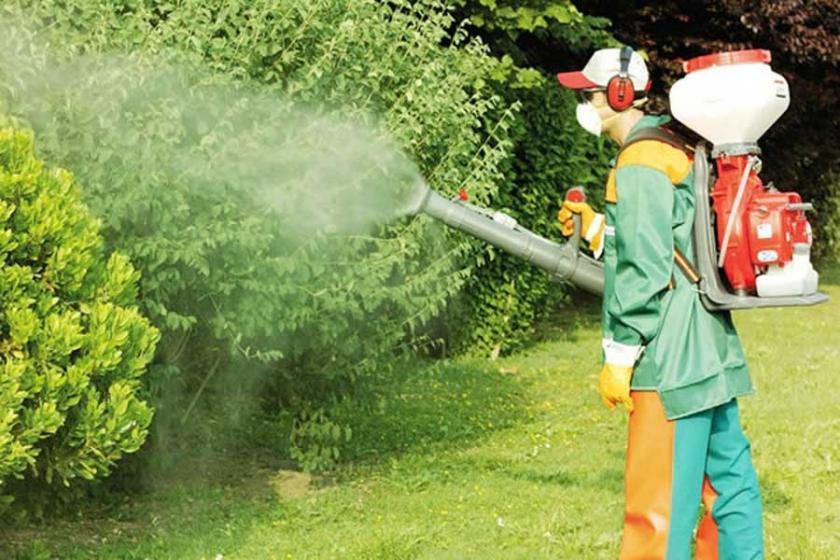 Pestisitler uzun süre maruz kalanlarda kansere neden oluyor ...