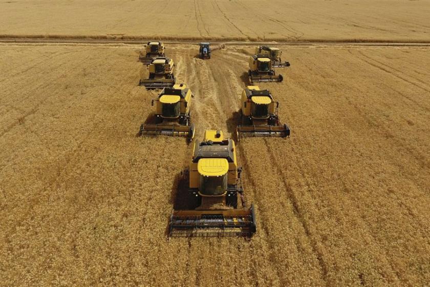 BM: Dünyadaki tarım arazilerinin üçte biri aşındı