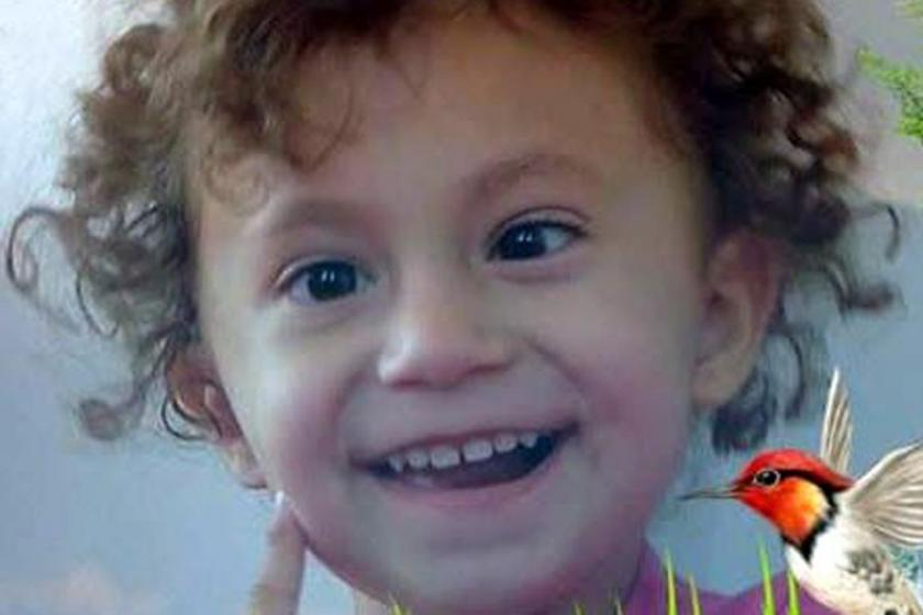 Kamyonetin çarptığı 3 yaşındaki Azra ağır yaralandı