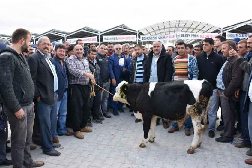 Aksaray'da et ithalatına tepki