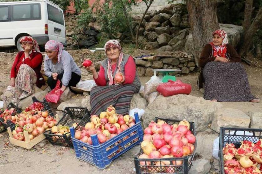 Hakkari'deki yayla yasakları köylüyü zora sokuyor