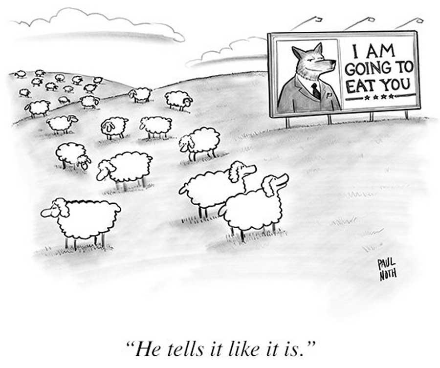 """Paul Noth, """"Koyunlar önceden biliyormuş"""""""
