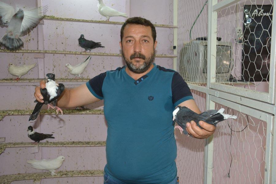 Kuşbaz Vedat Özbilmez