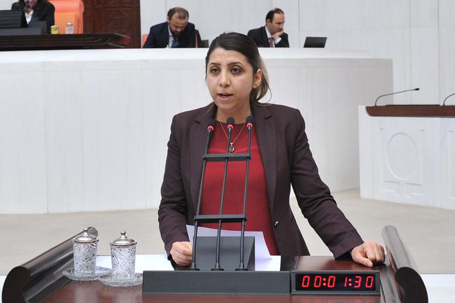 HDP Milletvekili Aycan İrmez