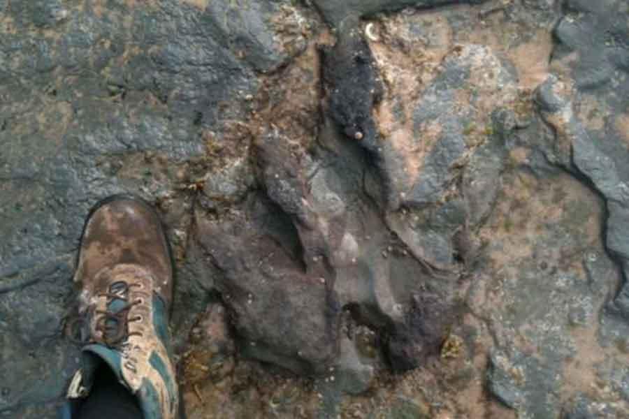 Dinozor ayak izinin zarar verilmeden önceki hali
