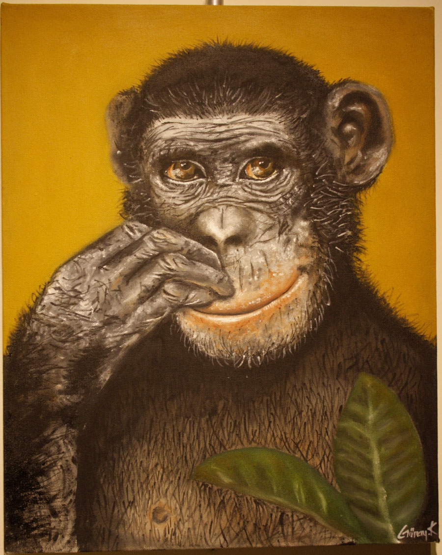 ekinoks sergisi şempanze resmi