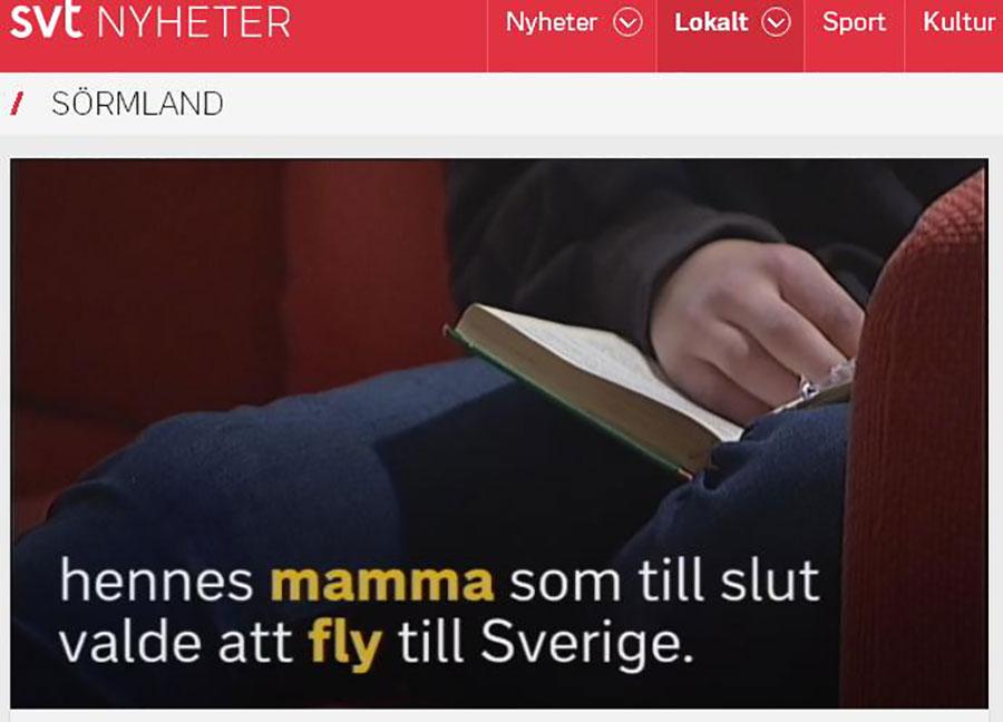 isveç devlet televizyonu
