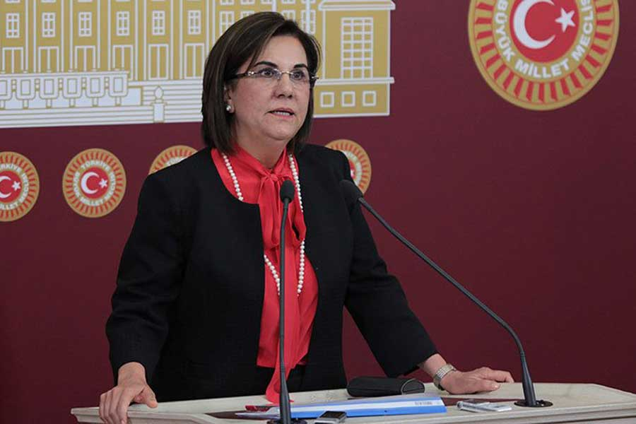 CHP Eskişehir Milletvekili Prof. Dr. Gaye Usluer