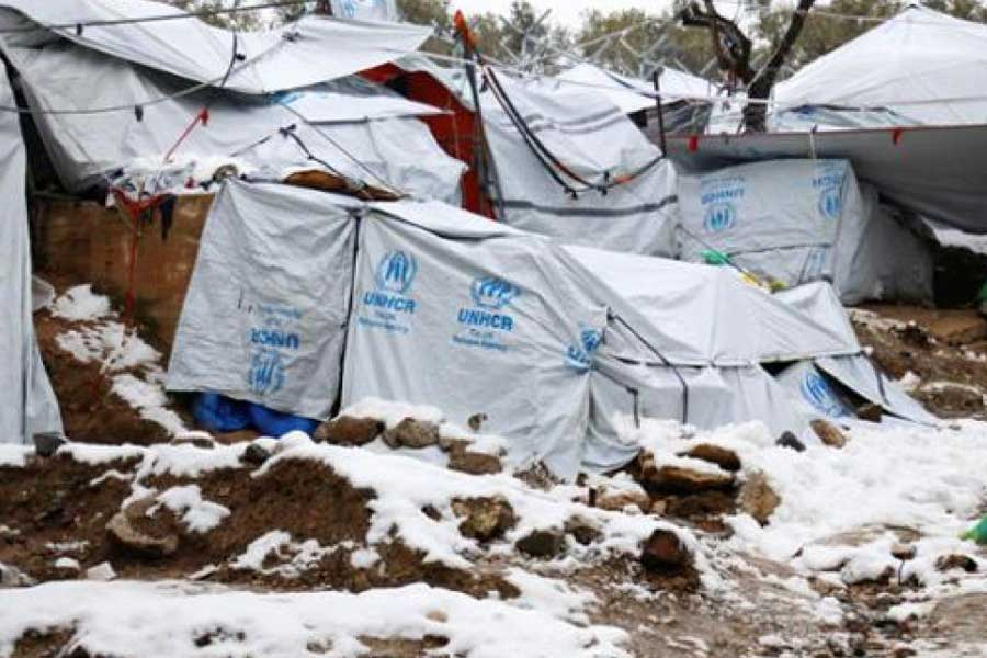 Mülteci (evrensel)