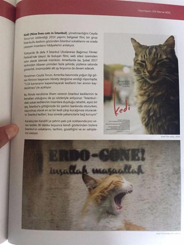Dergide yer alan kedi fotoğrafında 'Erdo-Gone!(Erdoğan Gitti), inşallah, maşallah' yazısı tartışma yaratmıştı.